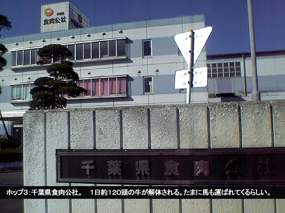 千葉県食肉公社